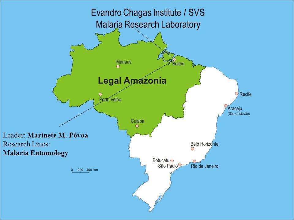 Evandro Chagas Institute / SVS Malaria Research Laboratory Leader: Marinete M.