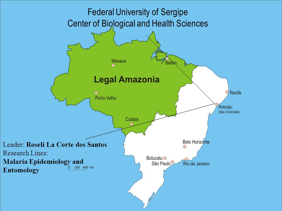 Federal University of Sergipe Center of Biological and Health Sciences Leader: Roseli La Corte dos Santos Research Lines: Malaria Epidemiology and Entomology