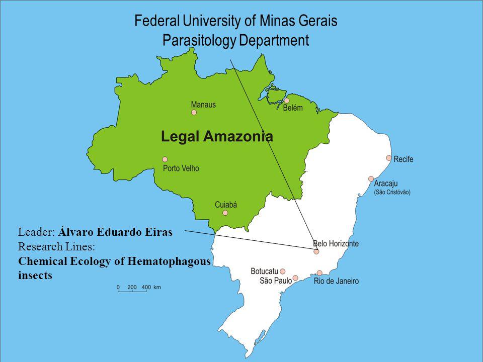 Federal University of Minas Gerais Parasitology Department Leader: Álvaro Eduardo Eiras Research Lines: Chemical Ecology of Hematophagous insects