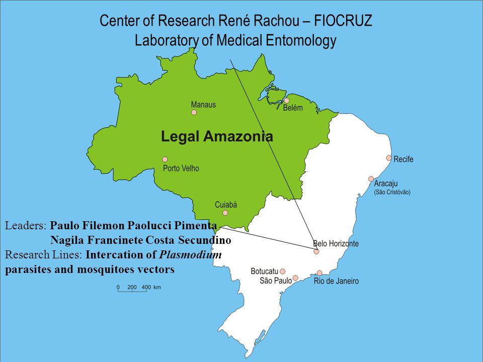 Center of Research René Rachou – FIOCRUZ Laboratory of Medical Entomology Leaders: Paulo Filemon Paolucci Pimenta Nagila Francinete Costa Secundino Research Lines: Intercation of Plasmodium parasites and mosquitoes vectors