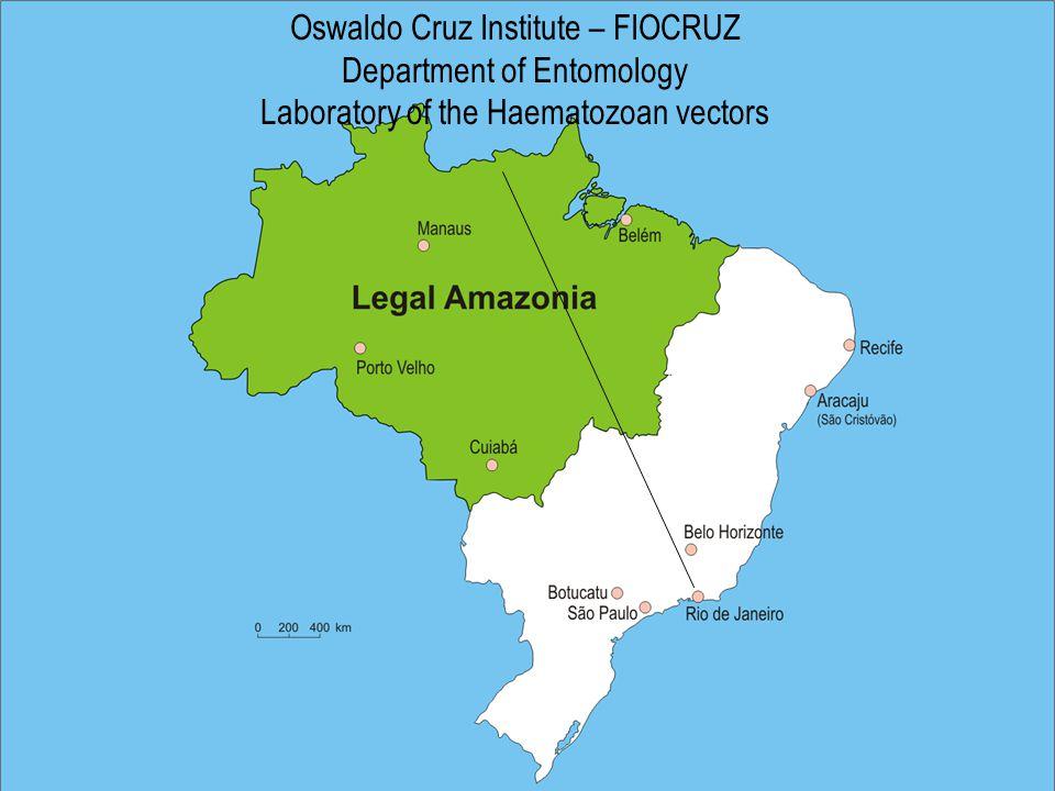 Oswaldo Cruz Institute – FIOCRUZ Department of Entomology Laboratory of the Haematozoan vectors