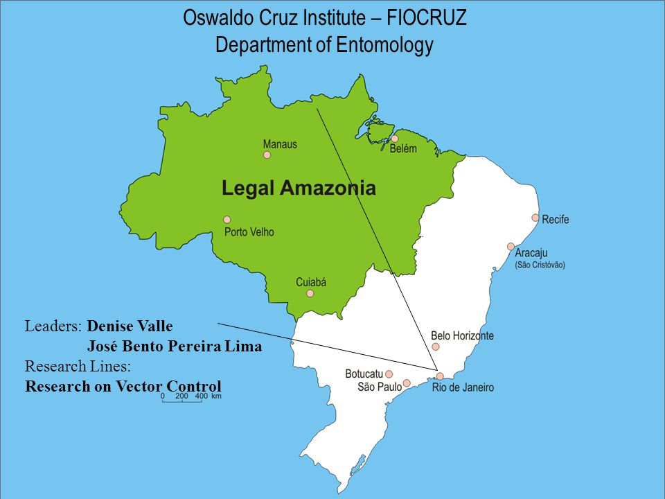 Oswaldo Cruz Institute – FIOCRUZ Department of Entomology Leaders: Denise Valle José Bento Pereira Lima Research Lines: Research on Vector Control