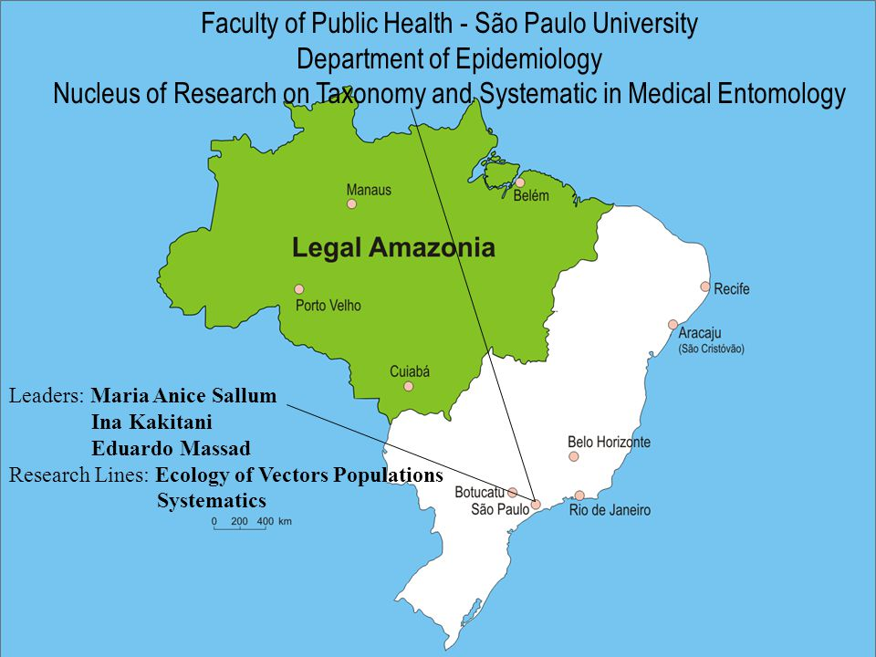 Faculty of Public Health - São Paulo University Department of Epidemiology Nucleus of Research on Taxonomy and Systematic in Medical Entomology Leaders: Maria Anice Sallum Ina Kakitani Eduardo Massad Research Lines: Ecology of Vectors Populations Systematics