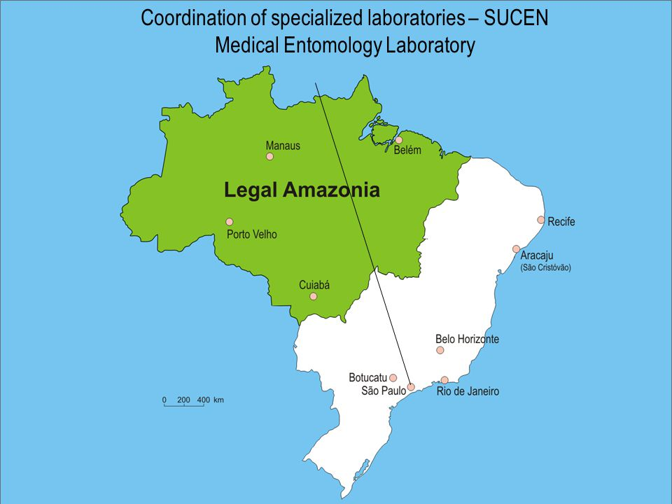 Coordination of specialized laboratories – SUCEN Medical Entomology Laboratory