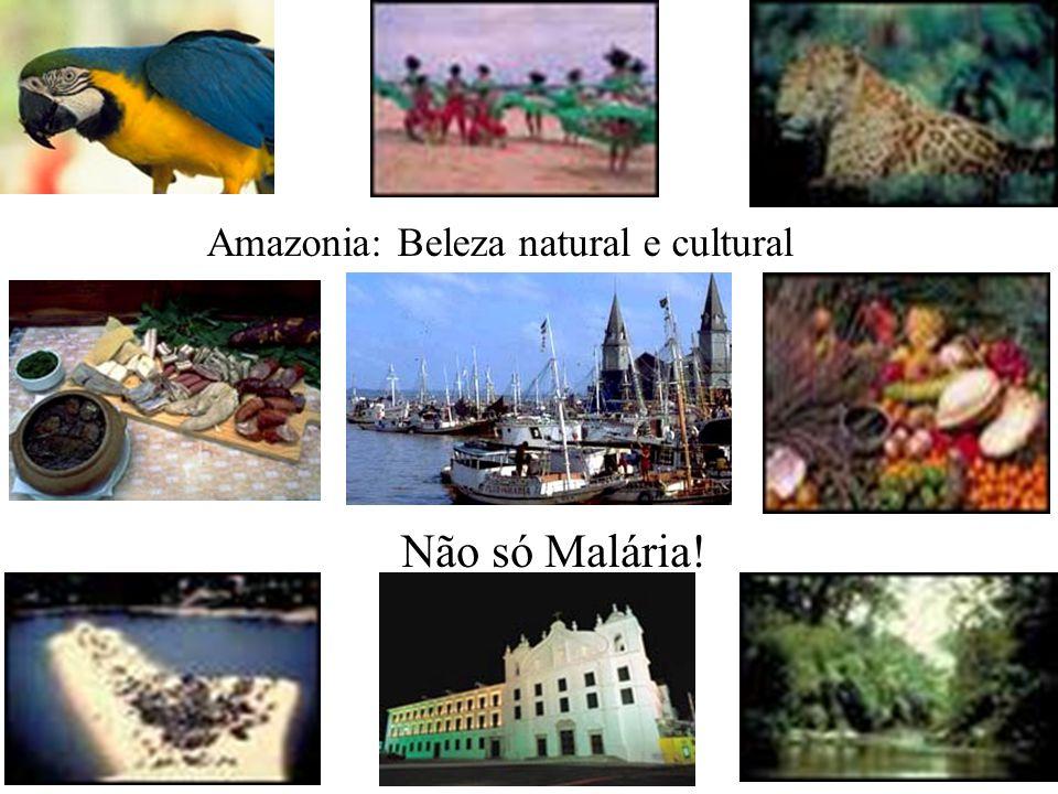 Amazonia: Beleza natural e cultural Não só Malária!