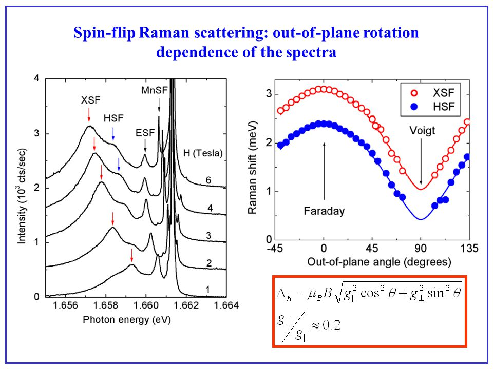 Spin-flip Raman scattering: out-of-plane rotation dependence of the spectra