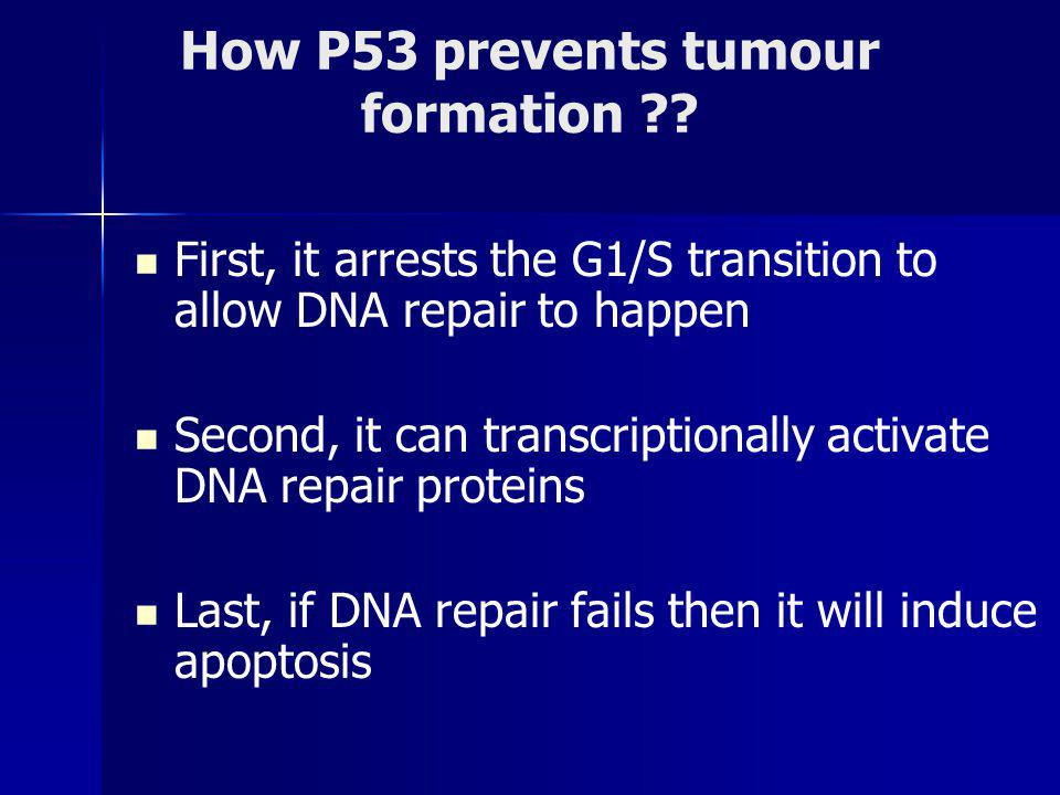 How P53 prevents tumour formation .