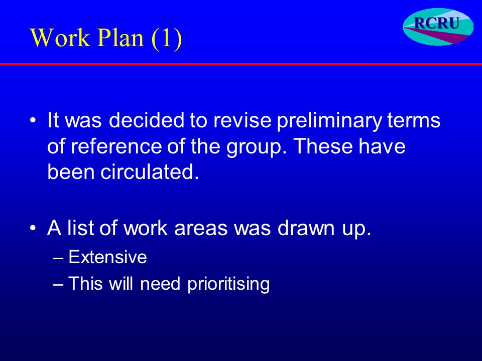 Work Plan (1) It was decided to revise preliminary terms of reference of the group.