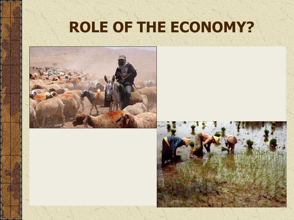ROLE OF THE ECONOMY?