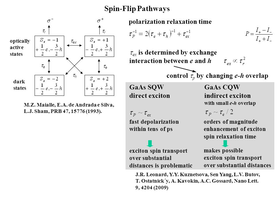Spin-Flip Pathways  ex hh ee ee rr rr optically active states dark states polarization relaxation time GaAs SQW direct exciton GaAs CQW ind