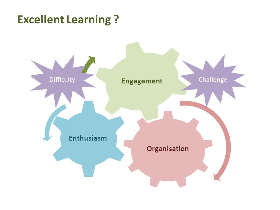 Organisation Enthusiasm Engagement DifficultyChallenge Excellent Learning