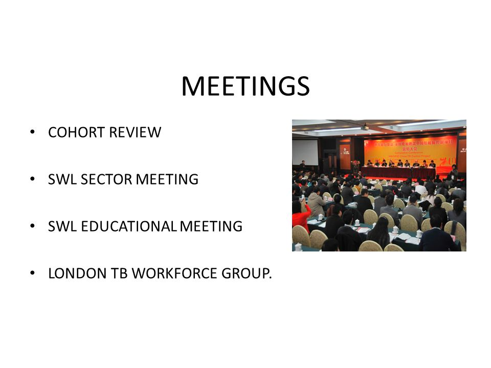 MEETINGS COHORT REVIEW SWL SECTOR MEETING SWL EDUCATIONAL MEETING LONDON TB WORKFORCE GROUP.