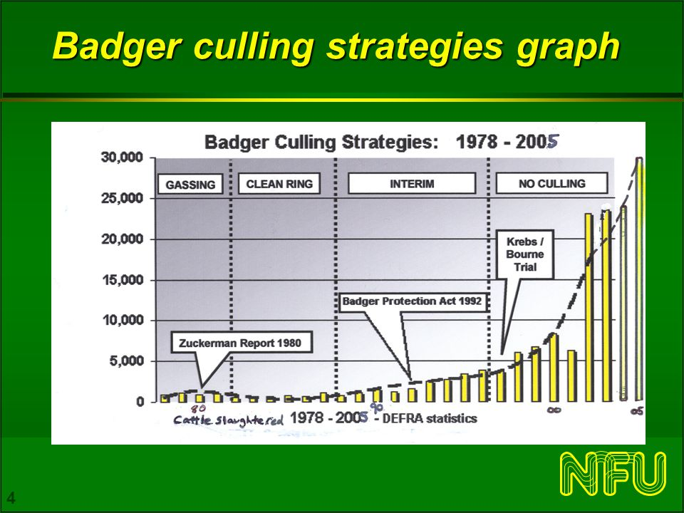 4 Badger culling strategies graph