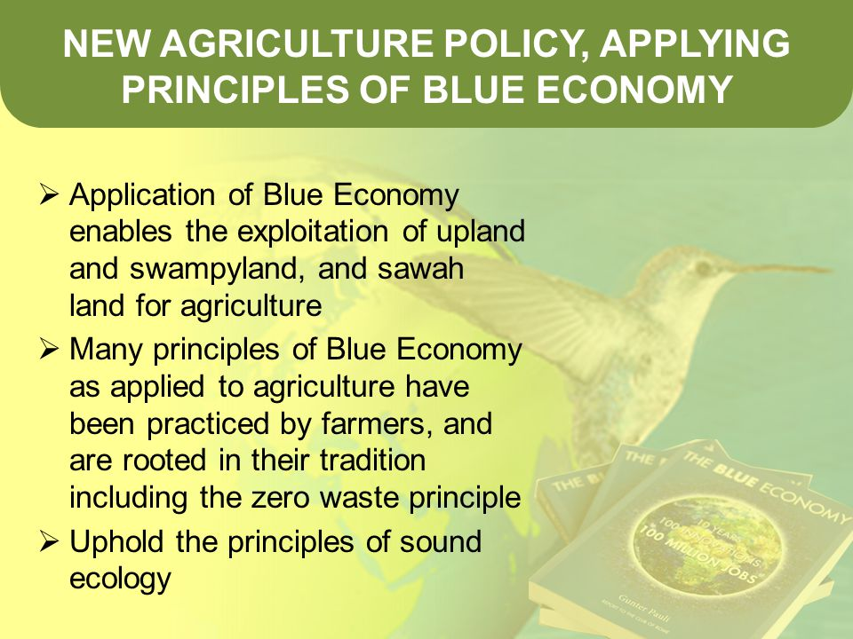  Application of Blue Economy enables the exploitation of upland and swampyland, and sawah land for agriculture  Many principles of Blue Economy as applied to agriculture have been practiced by farmers, and are rooted in their tradition including the zero waste principle  Uphold the principles of sound ecology NEW AGRICULTURE POLICY, APPLYING PRINCIPLES OF BLUE ECONOMY