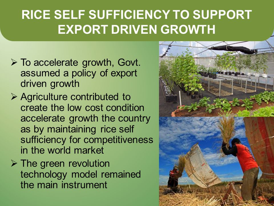 RICE SELF SUFFICIENCY TO SUPPORT EXPORT DRIVEN GROWTH  To accelerate growth, Govt.