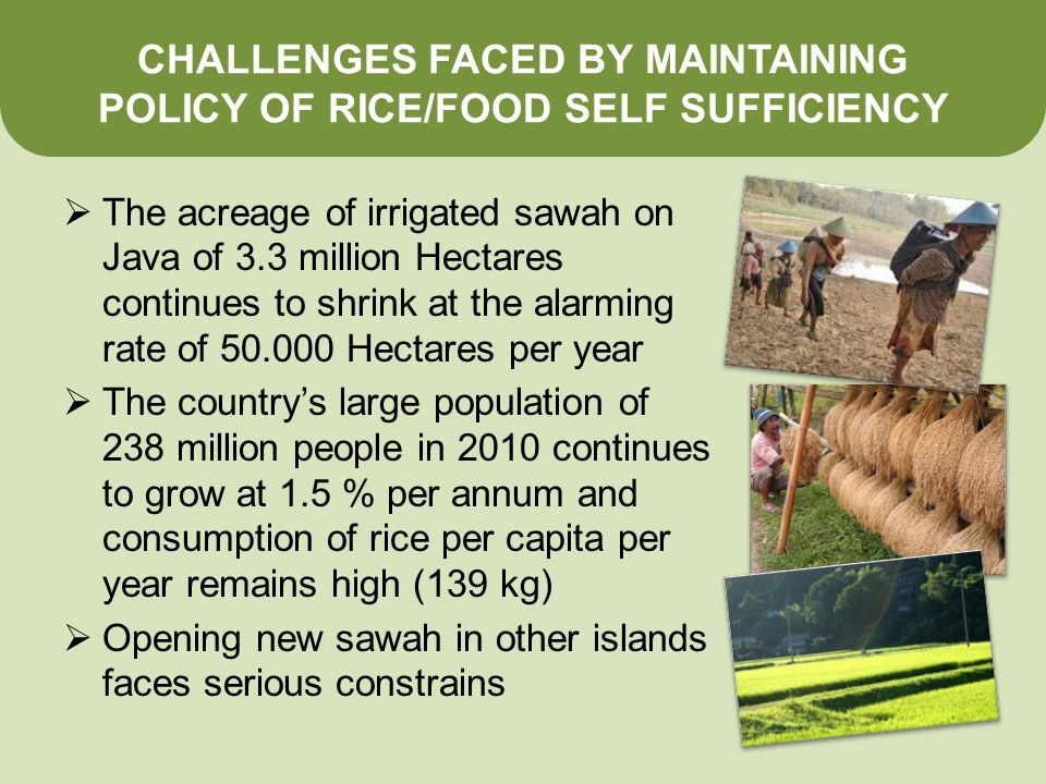 CHALLENGES FACED BY MAINTAINING POLICY OF RICE/FOOD SELF SUFFICIENCY  The acreage of irrigated sawah on Java of 3.3 million Hectares continues to shrink at the alarming rate of Hectares per year  The country's large population of 238 million people in 2010 continues to grow at 1.5 % per annum and consumption of rice per capita per year remains high (139 kg)  Opening new sawah in other islands faces serious constrains
