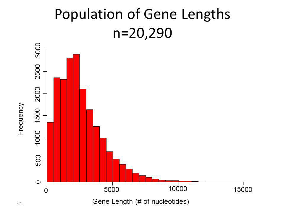 44 Population of Gene Lengths n=20,290 0 5000 10000 15000 Gene Length (# of nucleotides) Frequency 0 500 1000 1500 2000 2500 3000