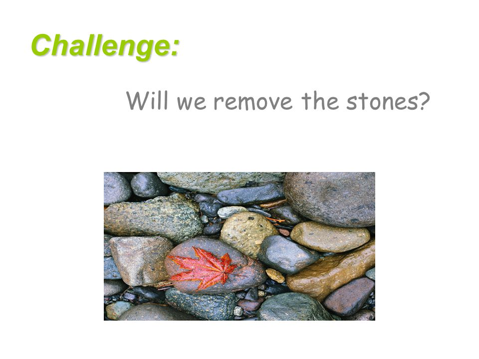 Challenge: Will we remove the stones