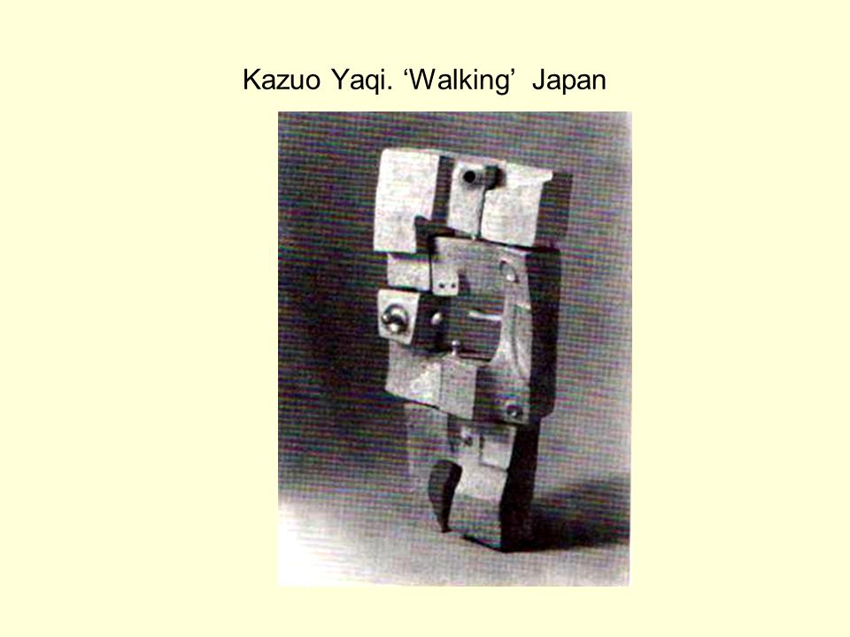 Kazuo Yaqi. 'Walking' Japan