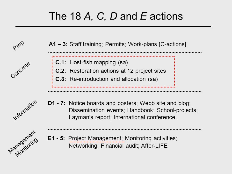 The 18 A, C, D and E actions C.1: Host-fish mapping (sa) C.2: Restoration actions at 12 project sites C.3: Re-introduction and allocation (sa) A1 – 3: Staff training; Permits; Work-plans [C-actions] D1 - 7: Notice boards and posters; Webb site and blog; Dissemination events; Handbook; School-projects; Layman's report; International conference.