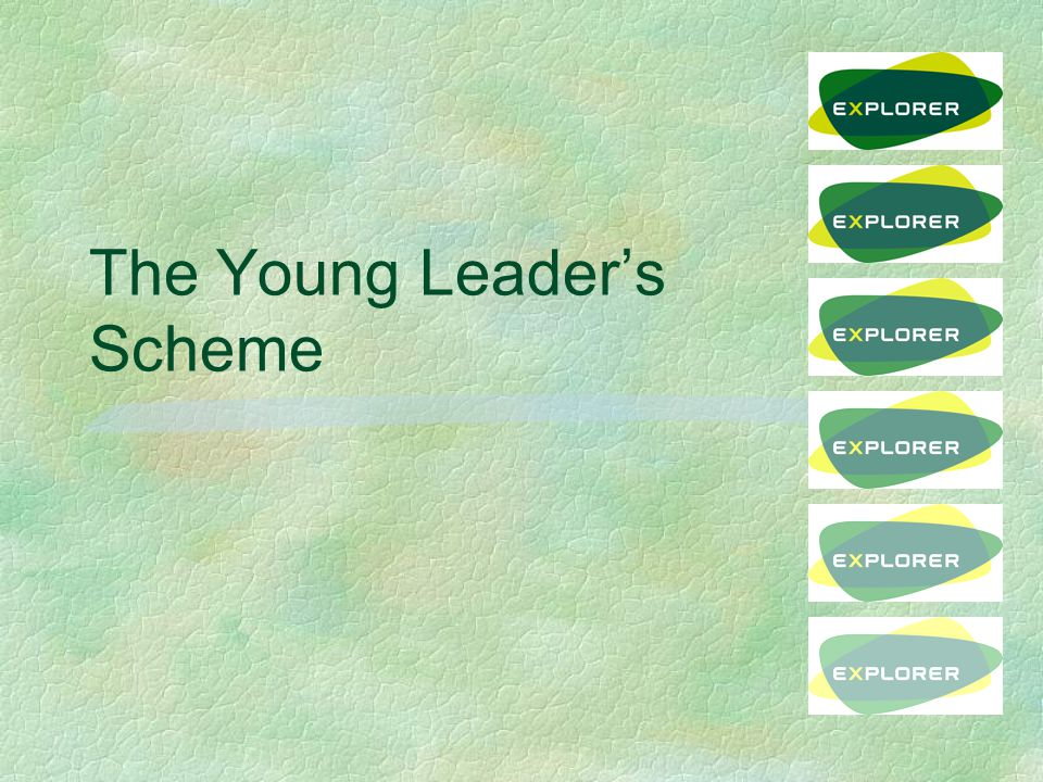YL Unit §District has a responsibility to set up a YL Unit l can be shared with another District (s) §Led by ESL(YL) §Different from other ES Units