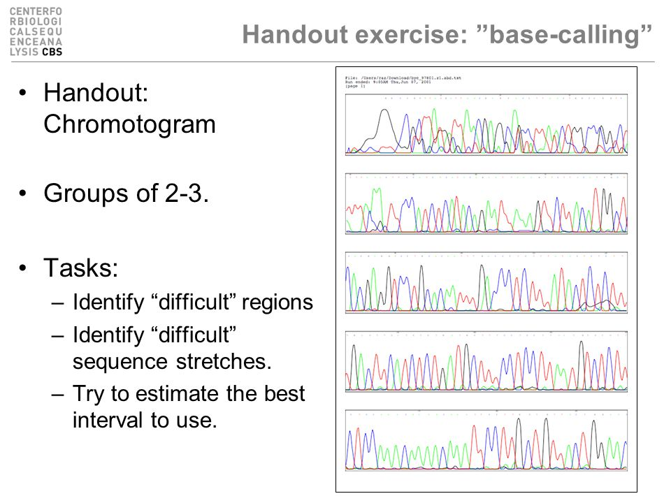 Handout exercise: base-calling Handout: Chromotogram Groups of 2-3.