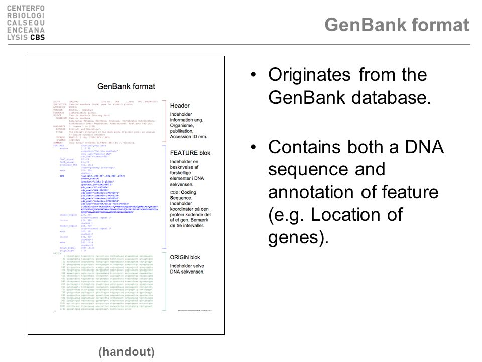 GenBank format Originates from the GenBank database.