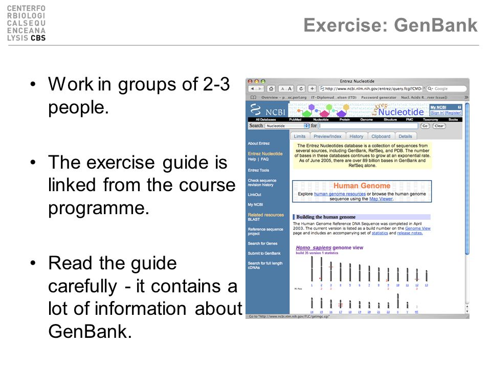 Exercise: GenBank Work in groups of 2-3 people.