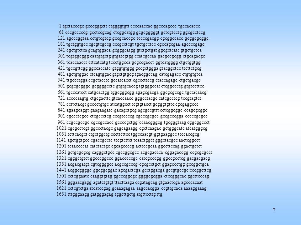 28 Vector model How to define weights.