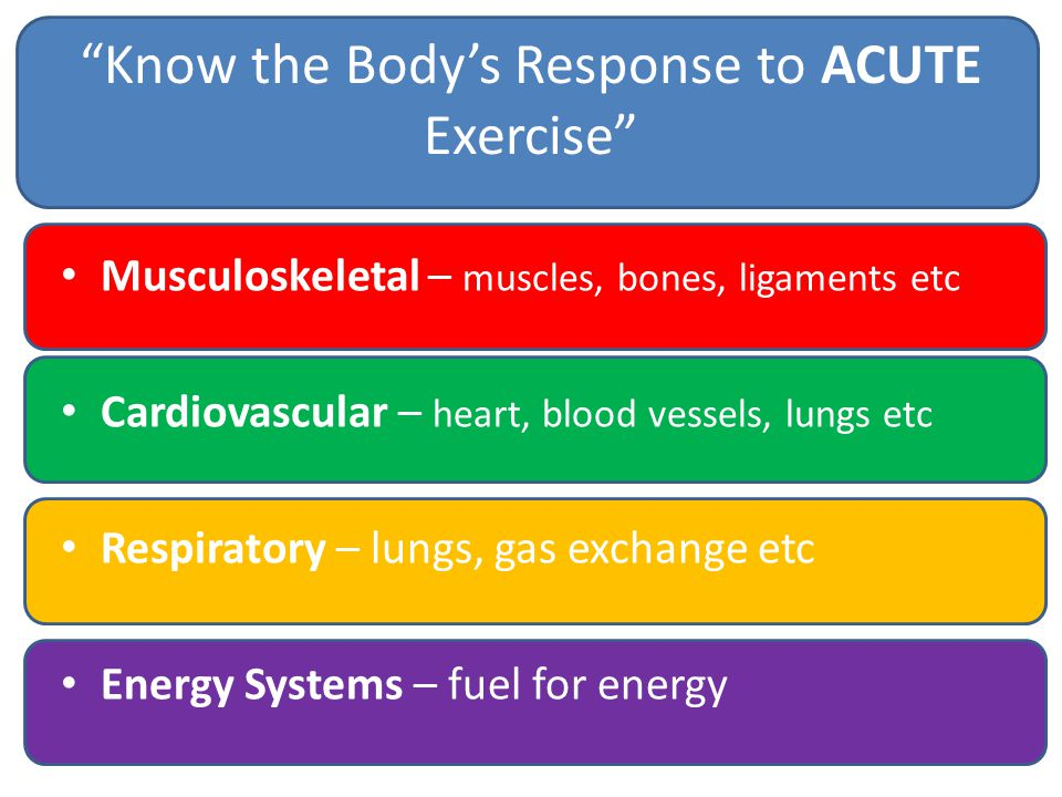 Know the Body's Response to ACUTE Exercise Musculoskeletal – muscles, bones, ligaments etc Cardiovascular – heart, blood vessels, lungs etc Respiratory – lungs, gas exchange etc Energy Systems – fuel for energy