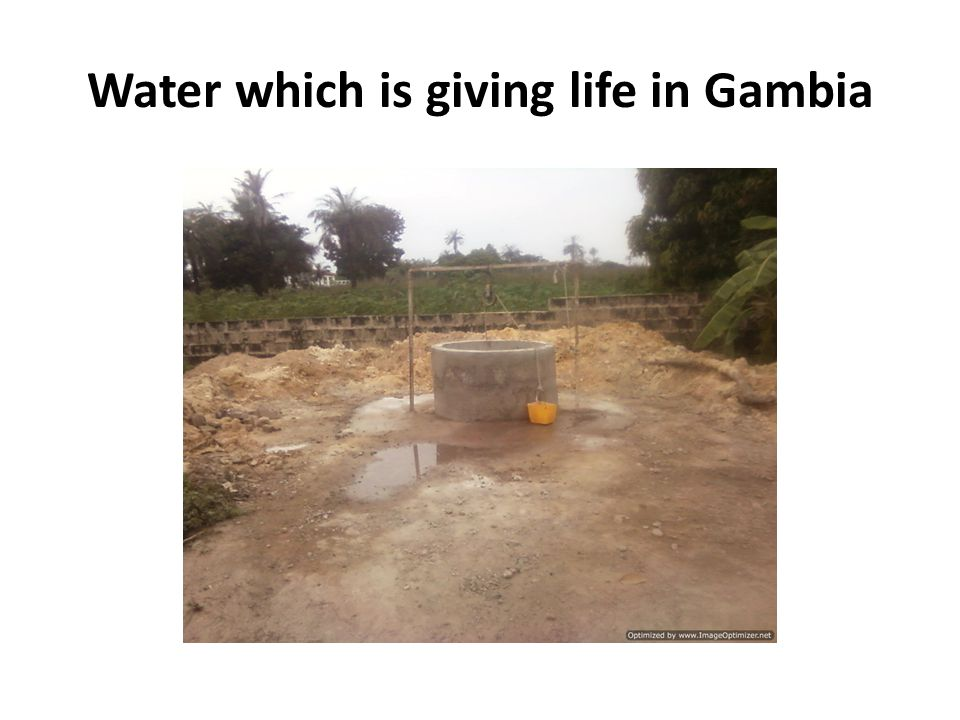 Water which is giving life in Gambia