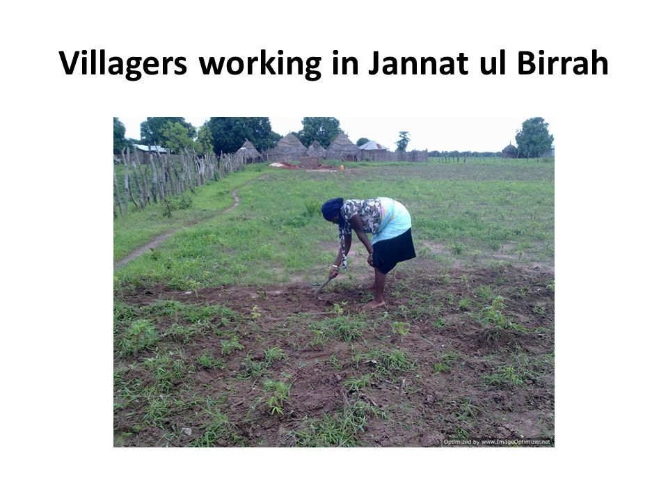 Villagers working in Jannat ul Birrah