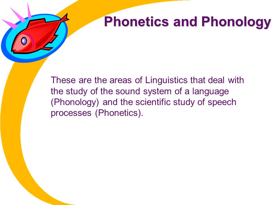 Phonetics and Phonology These are the areas of Linguistics that deal with the study of the sound system of a language (Phonology) and the scientific study of speech processes (Phonetics).