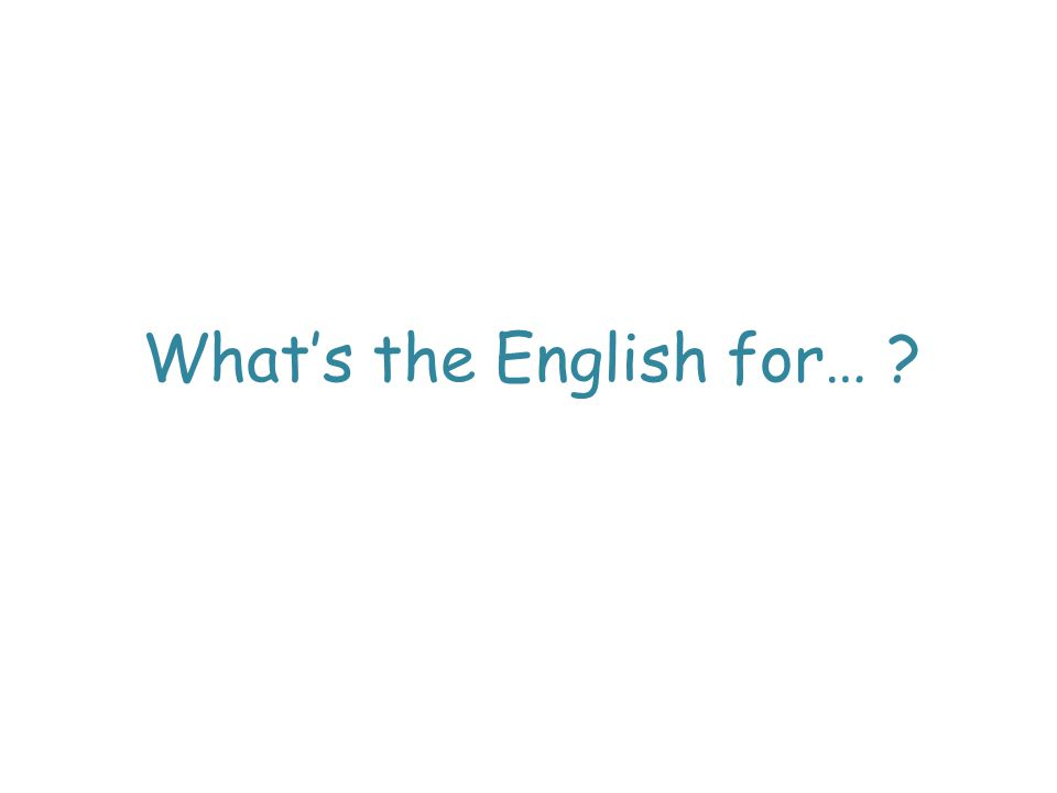 What's the English for…