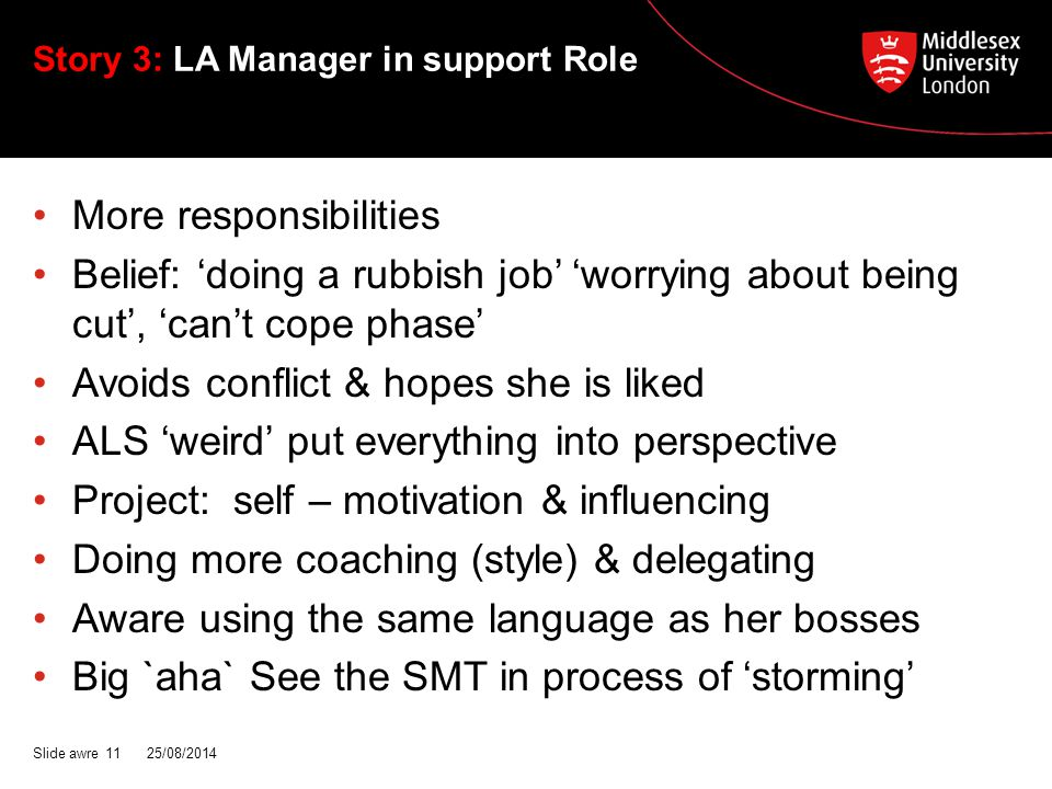 Story 3: LA Manager in support Role More responsibilities Belief: 'doing a rubbish job' 'worrying about being cut', 'can't cope phase' Avoids conflict