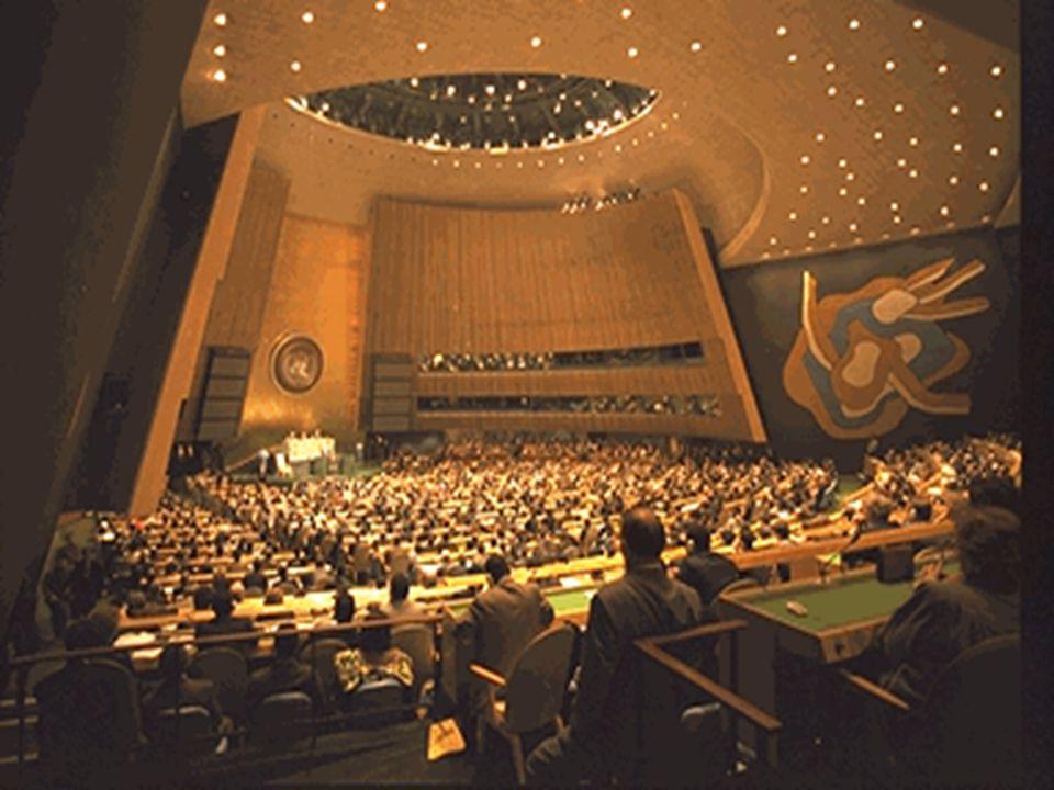 What is the UN Declaration.