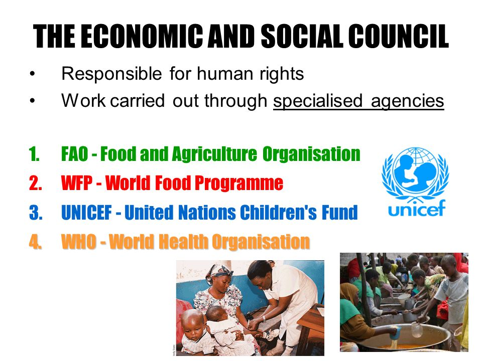 THE ECONOMIC AND SOCIAL COUNCIL Responsible for human rights Work carried out through specialised agencies 1.FAO - Food and Agriculture Organisation 2.WFP - World Food Programme 3.UNICEF - United Nations Children s Fund 4.WHO - World Health Organisation