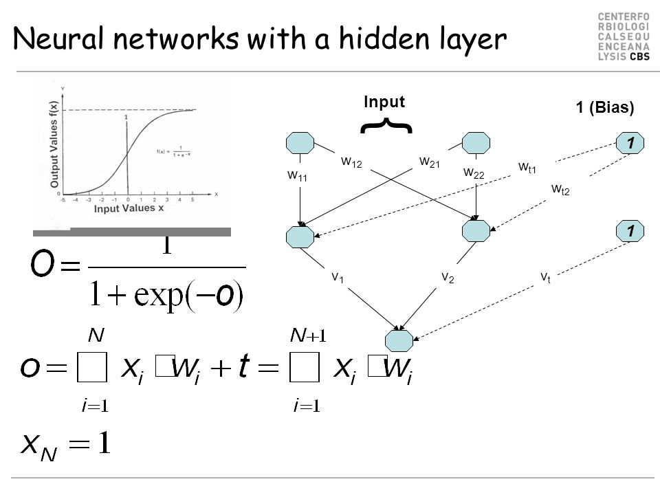 Neural networks with a hidden layer w 12 v1v1 w 21 w 22 v2v2 1 w t2 w t1 w 11 1 vtvt Input 1 (Bias) {