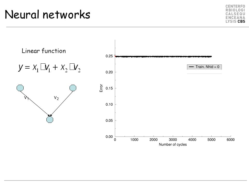 Neural networks v1v1 v2v2 Linear function