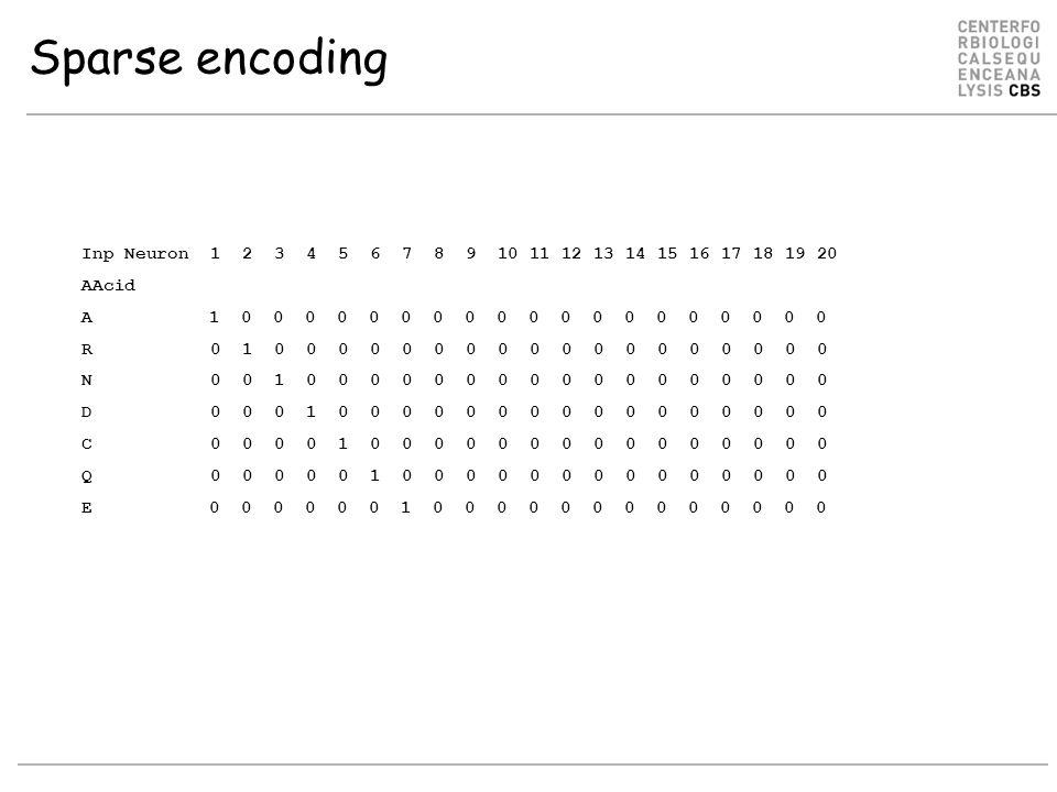 Sparse encoding Inp Neuron 1 2 3 4 5 6 7 8 9 10 11 12 13 14 15 16 17 18 19 20 AAcid A 1 0 0 0 0 0 0 0 0 0 0 0 0 0 0 0 0 0 0 0 R 0 1 0 0 0 0 0 0 0 0 0 0 0 0 0 0 0 0 0 0 N 0 0 1 0 0 0 0 0 0 0 0 0 0 0 0 0 0 0 0 0 D 0 0 0 1 0 0 0 0 0 0 0 0 0 0 0 0 0 0 0 0 C 0 0 0 0 1 0 0 0 0 0 0 0 0 0 0 0 0 0 0 0 Q 0 0 0 0 0 1 0 0 0 0 0 0 0 0 0 0 0 0 0 0 E 0 0 0 0 0 0 1 0 0 0 0 0 0 0 0 0 0 0 0 0