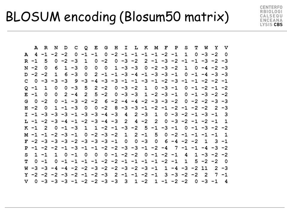 BLOSUM encoding (Blosum50 matrix) A R N D C Q E G H I L K M F P S T W Y V A 4 -1 -2 -2 0 -1 -1 0 -2 -1 -1 -1 -1 -2 -1 1 0 -3 -2 0 R -1 5 0 -2 -3 1 0 -2 0 -3 -2 2 -1 -3 -2 -1 -1 -3 -2 -3 N -2 0 6 1 -3 0 0 0 1 -3 -3 0 -2 -3 -2 1 0 -4 -2 -3 D -2 -2 1 6 -3 0 2 -1 -1 -3 -4 -1 -3 -3 -1 0 -1 -4 -3 -3 C 0 -3 -3 -3 9 -3 -4 -3 -3 -1 -1 -3 -1 -2 -3 -1 -1 -2 -2 -1 Q -1 1 0 0 -3 5 2 -2 0 -3 -2 1 0 -3 -1 0 -1 -2 -1 -2 E -1 0 0 2 -4 2 5 -2 0 -3 -3 1 -2 -3 -1 0 -1 -3 -2 -2 G 0 -2 0 -1 -3 -2 -2 6 -2 -4 -4 -2 -3 -3 -2 0 -2 -2 -3 -3 H -2 0 1 -1 -3 0 0 -2 8 -3 -3 -1 -2 -1 -2 -1 -2 -2 2 -3 I -1 -3 -3 -3 -1 -3 -3 -4 -3 4 2 -3 1 0 -3 -2 -1 -3 -1 3 L -1 -2 -3 -4 -1 -2 -3 -4 -3 2 4 -2 2 0 -3 -2 -1 -2 -1 1 K -1 2 0 -1 -3 1 1 -2 -1 -3 -2 5 -1 -3 -1 0 -1 -3 -2 -2 M -1 -1 -2 -3 -1 0 -2 -3 -2 1 2 -1 5 0 -2 -1 -1 -1 -1 1 F -2 -3 -3 -3 -2 -3 -3 -3 -1 0 0 -3 0 6 -4 -2 -2 1 3 -1 P -1 -2 -2 -1 -3 -1 -1 -2 -2 -3 -3 -1 -2 -4 7 -1 -1 -4 -3 -2 S 1 -1 1 0 -1 0 0 0 -1 -2 -2 0 -1 -2 -1 4 1 -3 -2 -2 T 0 -1 0 -1 -1 -1 -1 -2 -2 -1 -1 -1 -1 -2 -1 1 5 -2 -2 0 W -3 -3 -4 -4 -2 -2 -3 -2 -2 -3 -2 -3 -1 1 -4 -3 -2 11 2 -3 Y -2 -2 -2 -3 -2 -1 -2 -3 2 -1 -1 -2 -1 3 -3 -2 -2 2 7 -1 V 0 -3 -3 -3 -1 -2 -2 -3 -3 3 1 -2 1 -1 -2 -2 0 -3 -1 4