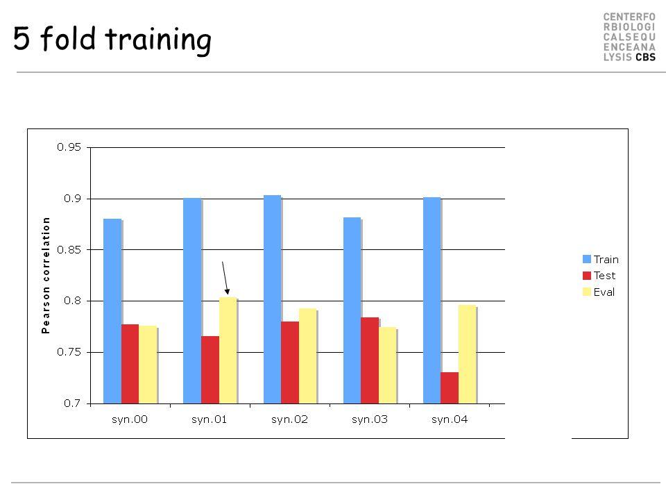 5 fold training