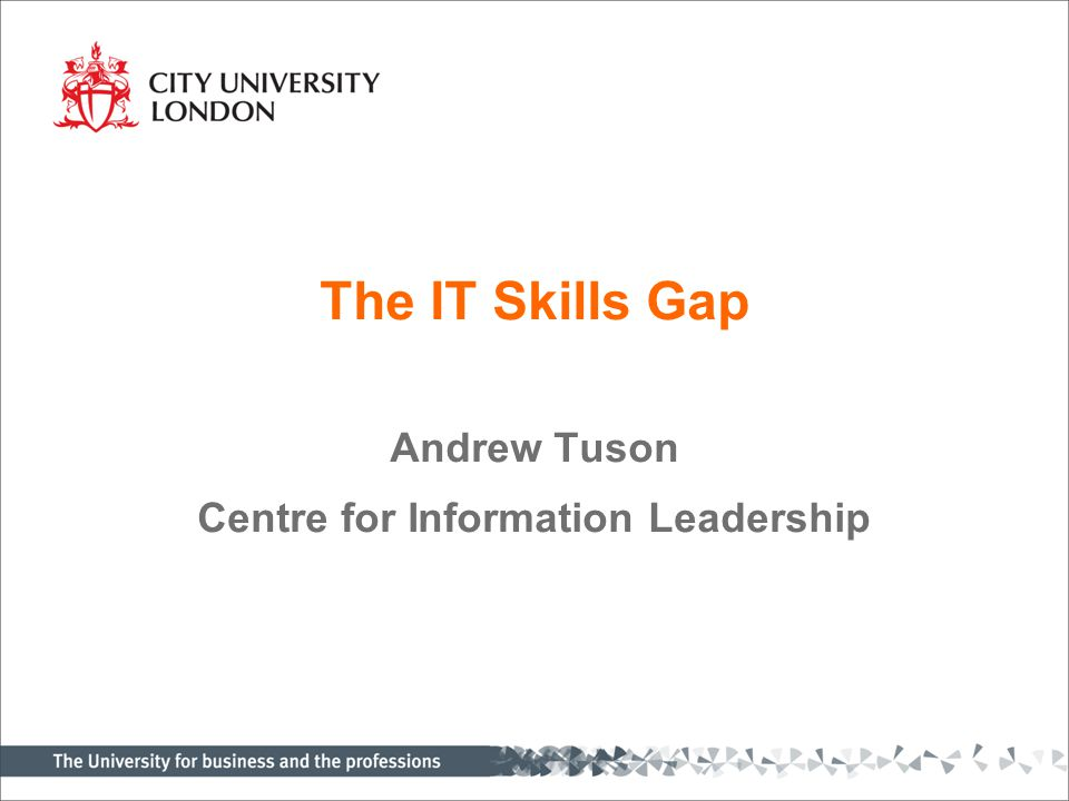 The IT Skills Gap Andrew Tuson Centre for Information Leadership