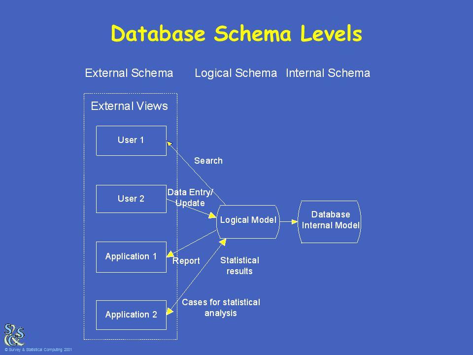 Database Schema Levels © Survey & Statistical Computing 2001