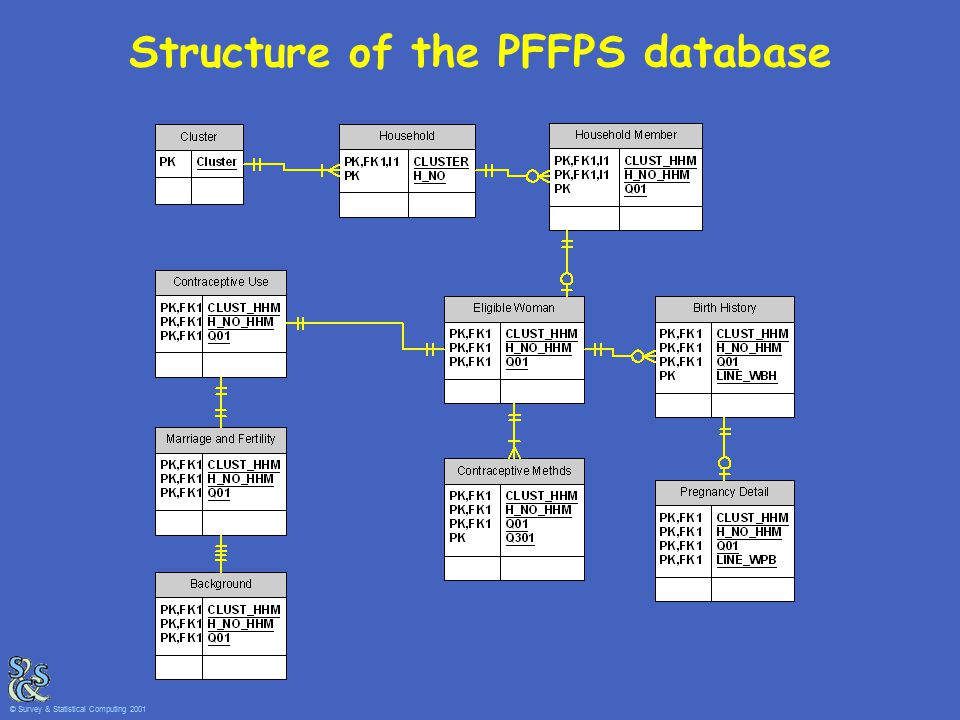 Structure of the PFFPS database © Survey & Statistical Computing 2001