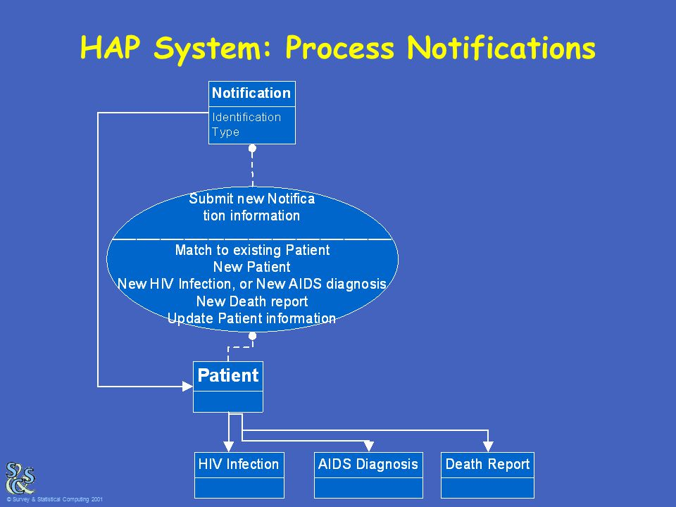 HAP System: Process Notifications © Survey & Statistical Computing 2001