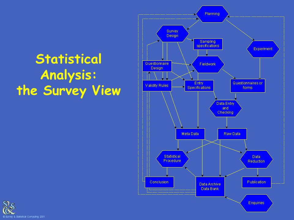Statistical Analysis: the Survey View © Survey & Statistical Computing 2001