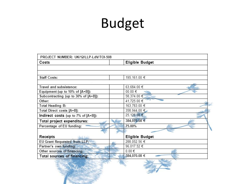 Budget PROJECT NUMBER: UK/12/LLP-LdV/TOI-508 Costs Eligible Budget Staff Costs: 195,161.00 € Travel and subsistence: 63,684.00 € Equipment (up to 10%
