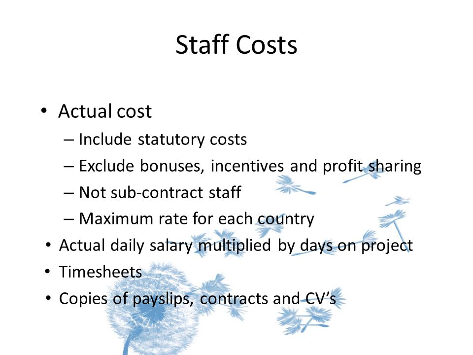 Staff Costs Actual cost – Include statutory costs – Exclude bonuses, incentives and profit sharing – Not sub-contract staff – Maximum rate for each country Actual daily salary multiplied by days on project Timesheets Copies of payslips, contracts and CV's