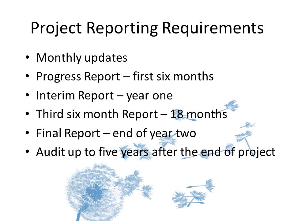 Project Reporting Requirements Monthly updates Progress Report – first six months Interim Report – year one Third six month Report – 18 months Final Report – end of year two Audit up to five years after the end of project